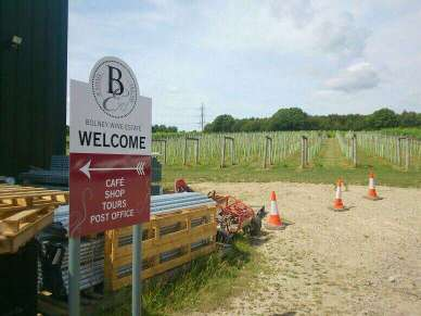 Bolney started as Bookers Vineyard back in 1972